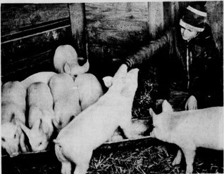 Cincinnati becomes Porkopolis – Onward Ohio History!