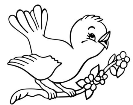 christnas bird coloring book
